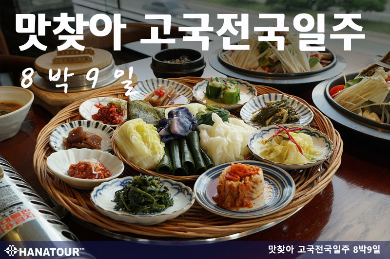 [US] Go! Go! 맛찾아 고국전국일주 8박9일